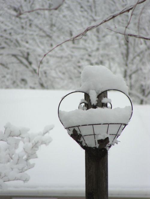 قلب برفی در طبیعت
