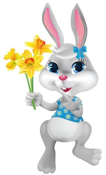 عکس خرگوش کارتونی سفید بامزه