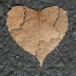 عکس قلب شکسته برگ