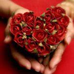عکس قلب و گل در دستان