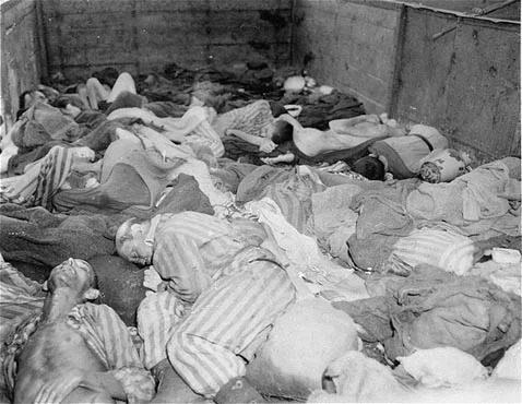 تصویری از جان باختگان جنگ جهانی دوم