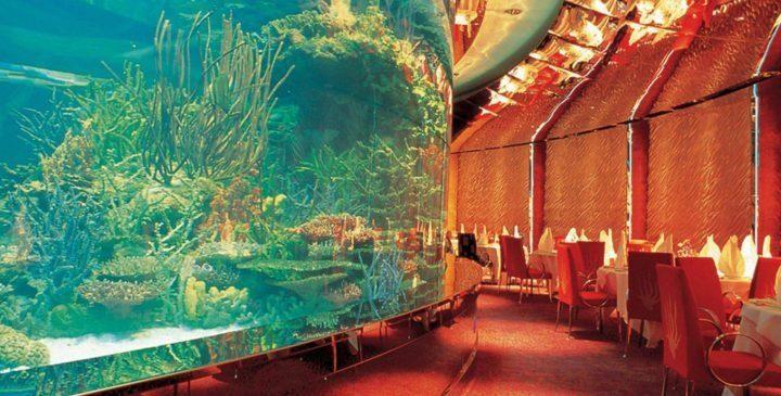 مهم ترین جاذبه های گردشگری دبی: رستوران های دبی