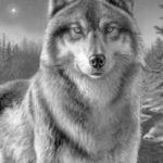 عکس نقاشی گرگ وحشی