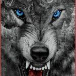 نقاشی گرگ وحشی سیاه و سفید