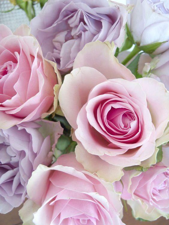 متن پیام تبریک روز مادر با جملات احساسی زیبا درباره مادر