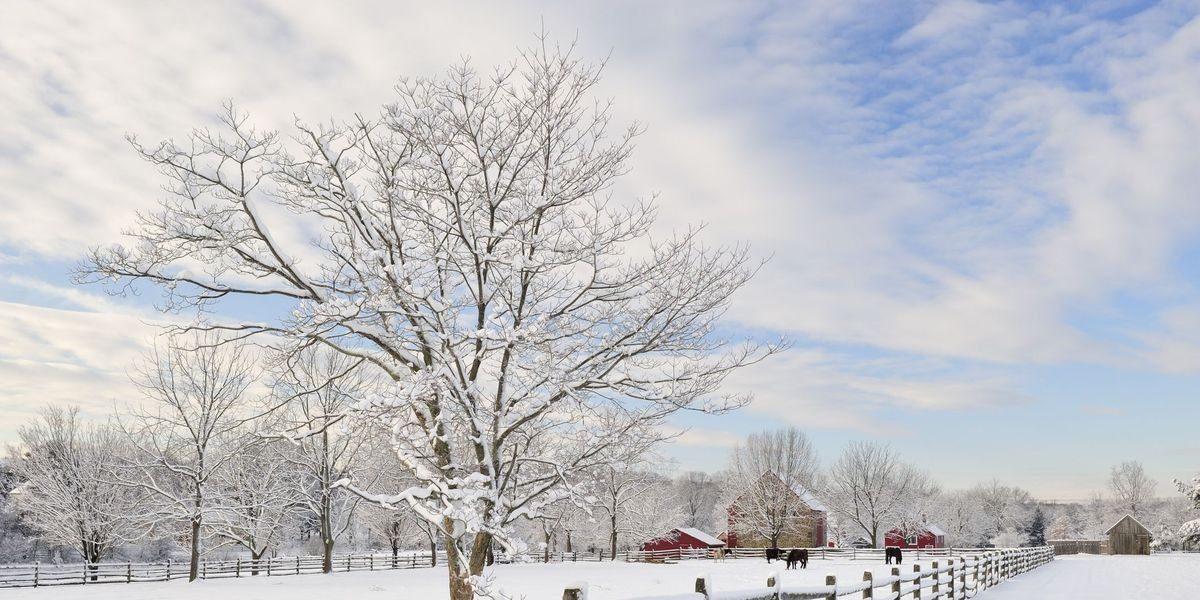 انشا فصل زمستان