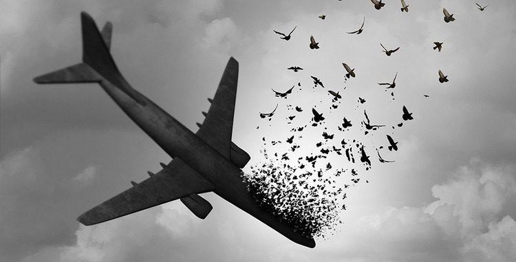 آیا کشته شدگان هواپیمای اوکراینی شهید هستند؟