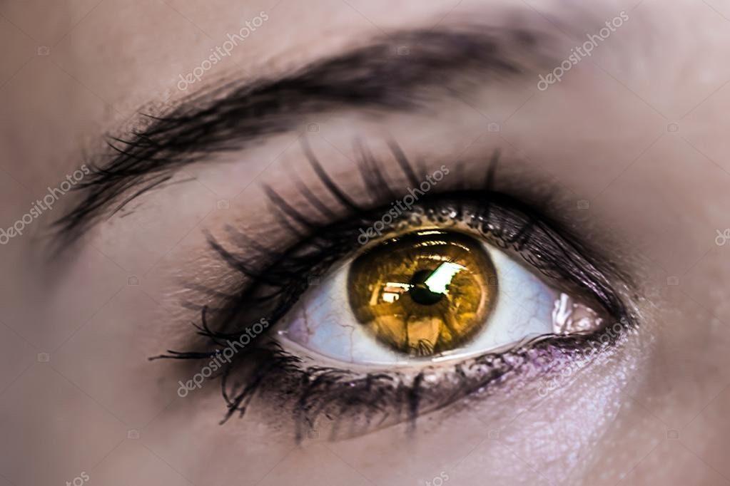شعر در مورد چشم زیبای یار
