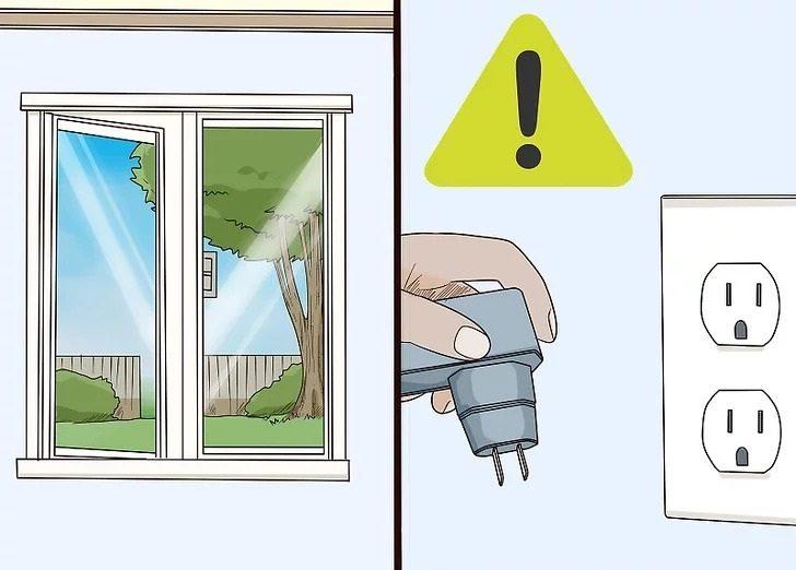 باز بودن پنجره و برق برای پرندگان خانگی خطرناک است