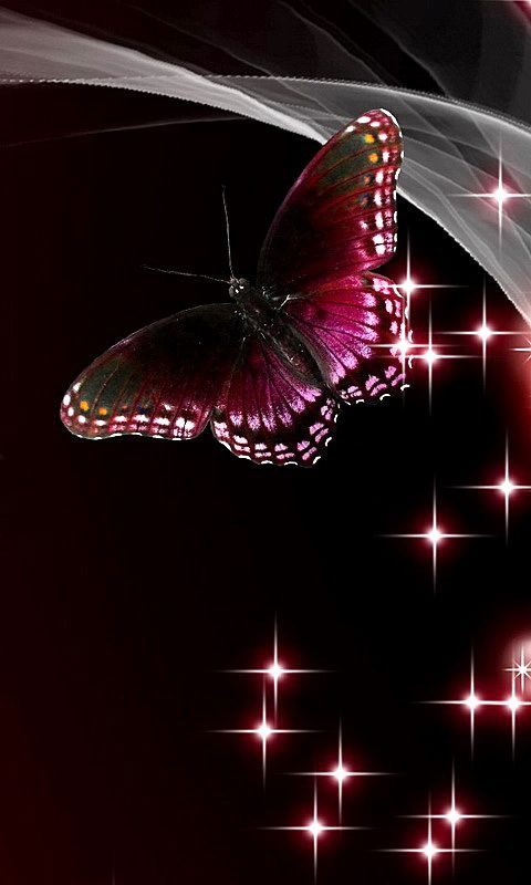 عکس پس زمینه پروانه برای گوشی موبایل (فانتزی و زیبا)