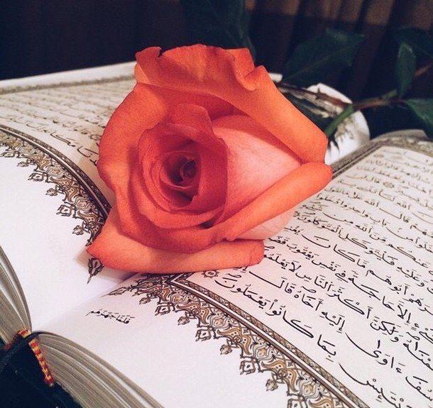 عکس قرآن کریم با گل برای استوری