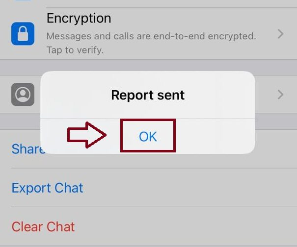 چگونه در واتس اپ ریپورت کنیم؟