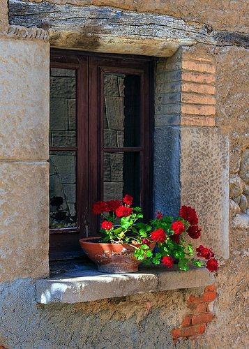 عکس گلدان لب پنجره