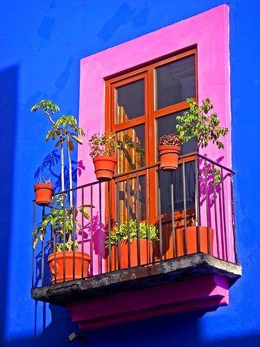 عکس گلدان لب پنجره برای پروفایل