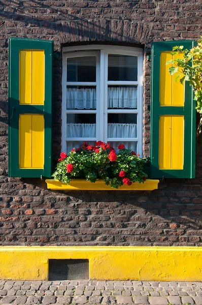 عکس خاص از گلدان کنار پنجره